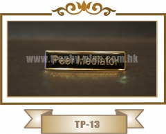 TP-13